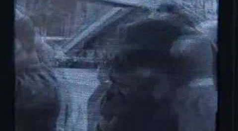 Мумий Тролль — Хищник